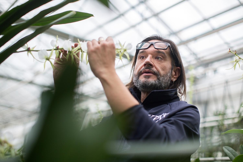 Encuentro con Carlos Magdalena, el mesías de las plantas