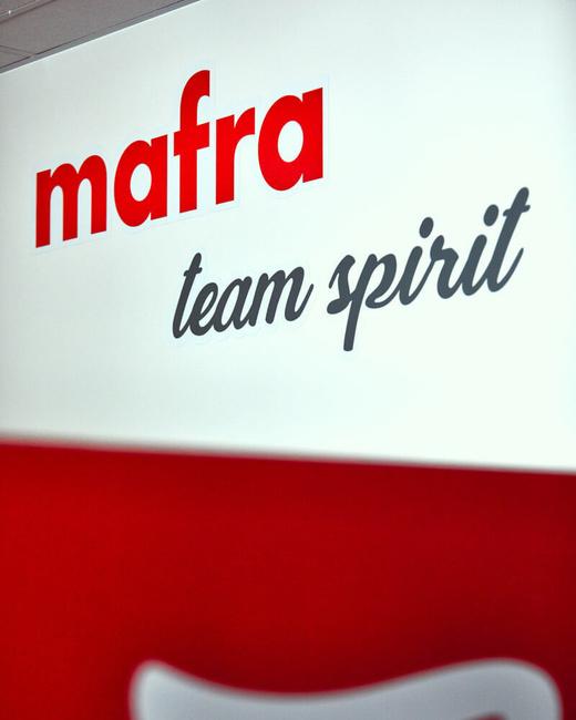 Mediální skupina MAFRA