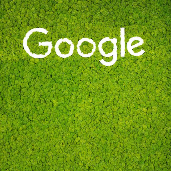 Tímovosť - Google