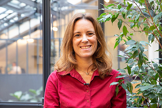 Rencontrez Anne-Carole, Directrice de Destination Amérique du Sud - Comptoir des Voyages
