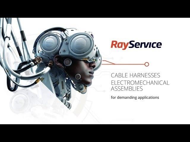 Ray Service