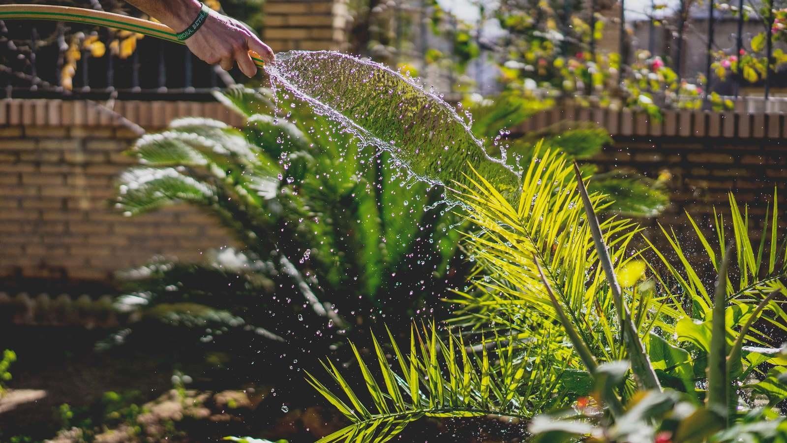 Paysagiste troyes free entretien espace verts et jardin for Entretien jardin emploi